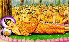 释迦牟尼佛圆寂以后在极乐世界吗?